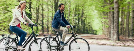 de fietsverzekering